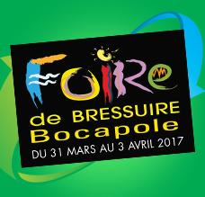 Foire de Bressuire 2017